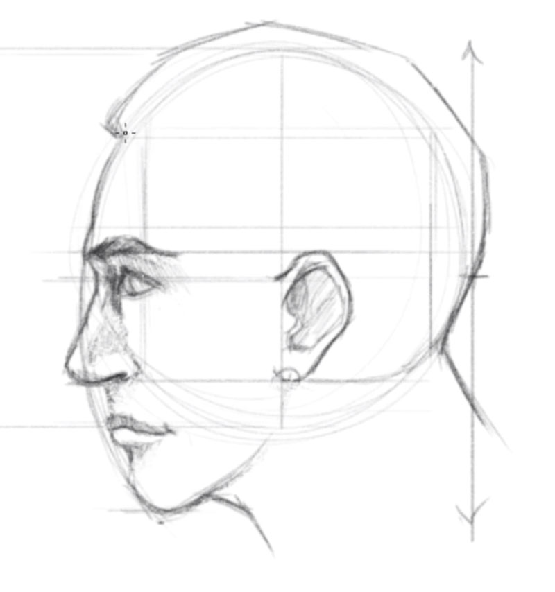 How to draw faces side view - step - 6 - Draw the Ear on the Side of the Face